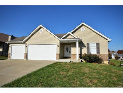 Photo of 255 Meadow Crest Drive, Troy, MO 63379-7211 (MLS # 17088592)