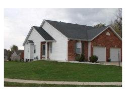 Photo of 140 Northbay Court, Edwardsville, IL 62034-6203 (MLS # 17088750)