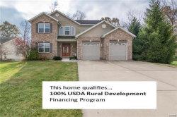 Photo of 732 Briarwood Drive, Bethalto, IL 62010-1168 (MLS # 17088954)