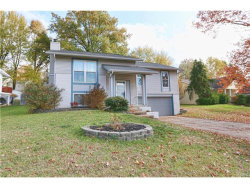 Photo of 146 Birchleaf Drive, St Peters, MO 63376-7037 (MLS # 17089436)