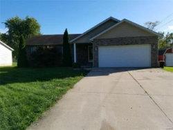 Photo of 110 North Elm Street, Bethalto, IL 62010 (MLS # 17089667)