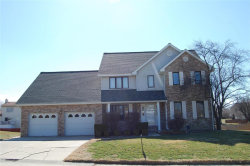 Photo of 25 Ernst Drive, Glen Carbon, IL 62034-1358 (MLS # 17089784)
