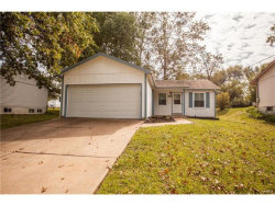 Photo of 11506 Terry Avenue, Maryland Heights, MO 63043-1847 (MLS # 17089834)