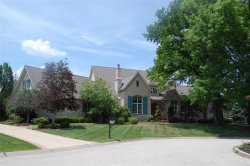 Photo of 17291 Courtyard Mill Lane, Chesterfield, MO 63005-4638 (MLS # 17089847)