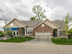 Photo of 16138 Amber Vista Drive, Ellisville, MO 63021 (MLS # 17090595)