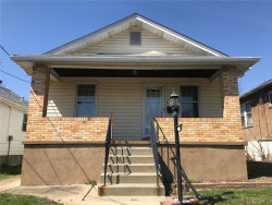 Photo of 1433 Wachtel Drive, St Louis, MO 63125-1929 (MLS # 17090742)