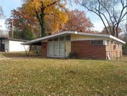 Photo of 8208 Midwood Avenue, St Louis, MO 63134-1209 (MLS # 17091022)