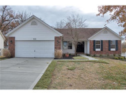 Photo of 3122 Country Knoll, St Charles, MO 63303-6344 (MLS # 17091066)