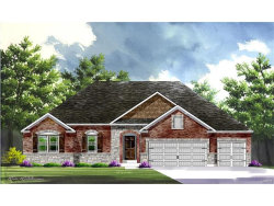 Photo of 0-NEW Build Indigo@Patriots Ridge, Cottleville, MO 63304 (MLS # 17091440)