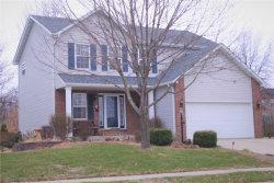 Photo of 2829 Falcon Crest Drive, Edwardsville, IL 62025 (MLS # 17094021)