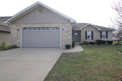 Photo of 404 Pheasant Drive, Worden, IL 62097-1161 (MLS # 17094432)