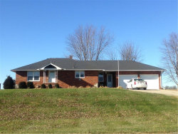 Photo of 3823 State Route 160, Highland, IL 62249-3405 (MLS # 17094926)