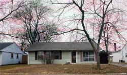 Photo of 109 Wilson Park Lane, Granite City, IL 62040 (MLS # 18000755)