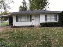Photo of 4038 Melrose Avenue, Granite City, IL 62040-2205 (MLS # 18002104)
