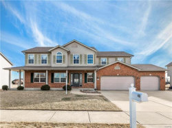 Photo of 40 Whistling Straits Drive, Highland, IL 62249-2876 (MLS # 18003389)