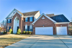 Photo of 355 Cherry Hills Meadows, Wildwood, MO 63040-2118 (MLS # 18003549)