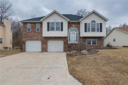 Photo of 206 Forest Ridge Court, Glen Carbon, IL 62034-1491 (MLS # 18003659)