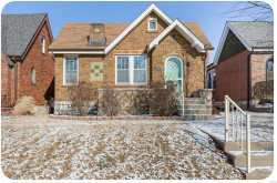 Photo of 4077 Haven, St Louis, MO 63116-2826 (MLS # 18003938)