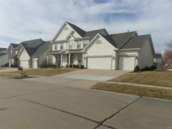Photo of 107 Derbyshire Lane, Dardenne Prairie, MO 63368-8358 (MLS # 18004236)