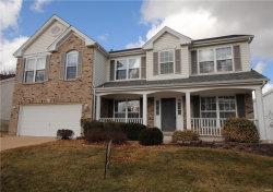 Photo of 149 Birchwood Trail Drive, Maryland Heights, MO 63043-5119 (MLS # 18005109)