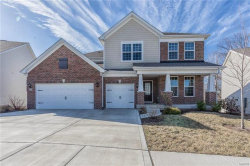 Photo of 320 Chestnut Creek Circle, Dardenne Prairie, MO 63368-7108 (MLS # 18006098)