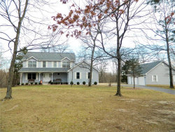 Photo of 196 Timber Pines Drive, Defiance, MO 63341-1761 (MLS # 18006337)