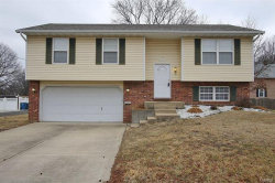 Photo of 401 Willoughby Lane, Collinsville, IL 62234-3798 (MLS # 18006902)