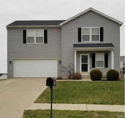 Photo of 311 Mill Stone Drive, Moscow Mills, MO 63362-2524 (MLS # 18007071)