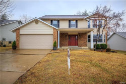 Photo of 925 Blake Court, St Peters, MO 63376-5527 (MLS # 18007934)