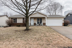Photo of 3812 Harvest Point Drive, St Peters, MO 63376-7319 (MLS # 18008014)