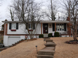 Photo of 540 Hickory Hollow Lane, Kirkwood, MO 63122-5745 (MLS # 18009125)