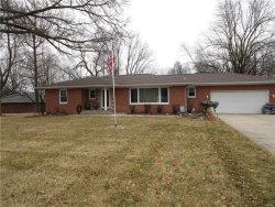 Photo of 50 Will Vina Drive, Collinsville, IL 62234-5433 (MLS # 18009297)