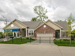 Photo of 16135 Amber Vista Drive, Ellisville, MO 63021 (MLS # 18009503)