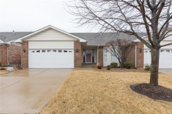 Photo of 896 Penny Lane, St Peters, MO 63376-7365 (MLS # 18010824)