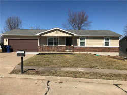 Photo of 405 Ann, Wentzville, MO 63385-2719 (MLS # 18010882)