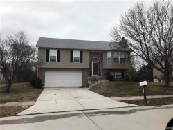 Photo of 662 Ballantrae, Wentzville, MO 63385-2869 (MLS # 18010910)