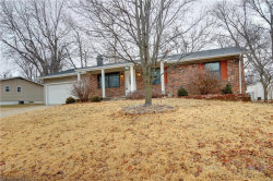 Photo of 17 Griffin Drive, St Peters, MO 63376-1913 (MLS # 18010914)