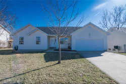 Photo of 165 Pine Hollow Lane, Collinsville, IL 62234 (MLS # 18013399)
