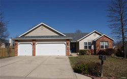 Photo of 828 Cedar Valley Drive, Maryville, IL 62062 (MLS # 18016161)