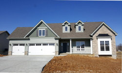 Photo of 254 Austin Oaks Dr (lot 5), Moscow Mills, MO 63362 (MLS # 18018156)