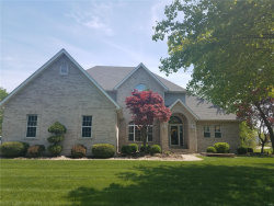 Photo of 9 Sher Nan Drive, Maryville, IL 62062-5817 (MLS # 18023101)