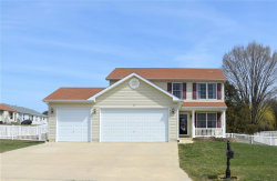 Photo of 21 Selleck Court, Troy, MO 63379-3573 (MLS # 18027813)