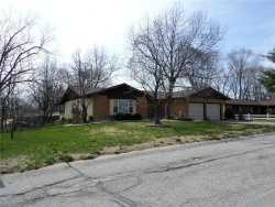 Photo of 12 Foreman Drive, Glen Carbon, IL 62034-1309 (MLS # 18028049)