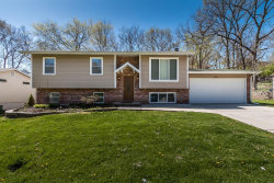 Photo of 1241 New Towne, Arnold, MO 63010-4217 (MLS # 18028443)