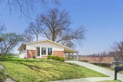 Photo of 527 Joshua Drive, St Louis, MO 63126-1427 (MLS # 18029998)