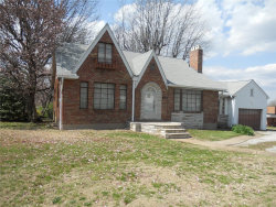 Photo of 911 Lemay Ferry Road, St Louis, MO 63125 (MLS # 18030008)