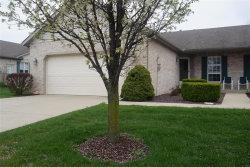 Photo of 4562 Elk Meadows Lane, Smithton, IL 62285-2938 (MLS # 18032471)