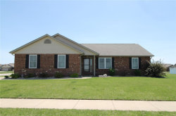 Photo of 85 Crescent View, Highland, IL 62249 (MLS # 18036804)