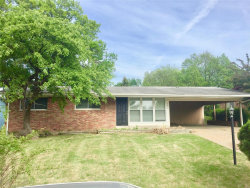 Photo of 10326 Viscount, St Louis, MO 63136-5642 (MLS # 18041604)