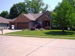 Photo of 532 Glendale Drive, Troy, IL 62294-1766 (MLS # 18042177)